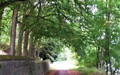 Wandelingen in Annevoie en omgeving